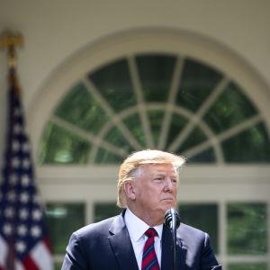 President Trump framför Vita huset i solsken