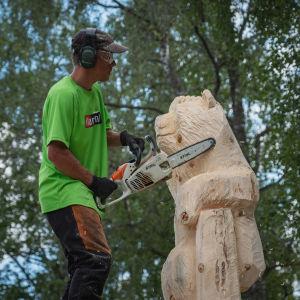Mies sahaa moottorisahalla puuveistosta, karhun mallinen