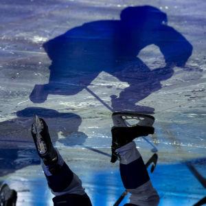 Skugga av ishockeyspelare på is.