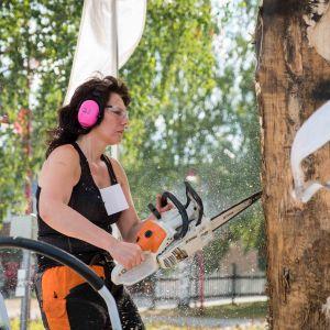 Nainen mustassa topissa ja pinkeissä kuulosuojaimissa veistää moottorisahalla tukkia.