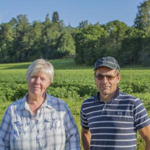 Claes Lindberg och Birgitta Nikander-Lindberg vid ett potatisfält