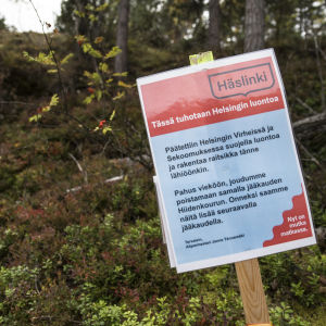 Helsingin Vartiokylän hiidenkouru.
