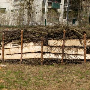 Valmis lahopuuaita puutarhassa