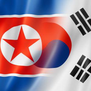 Grafik med Sydkoreas och Nordkoreas flaggor sammanflätade.