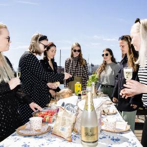 Kuvassa Kati Kekkonen, Tuuli Latva-Teikari, Annukka Lehtonen, Mariia Kauppi, Maiju Koski, Ella Arkko ja Kaisa Kiiski ovat piknikillä Tervasaaren rannassa.