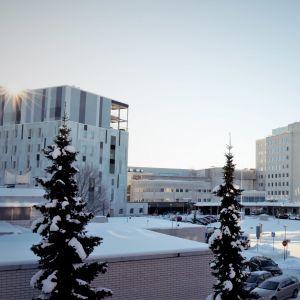 Ljusa byggnader i flera våningar, i förgrunden snötäckta trädtoppar.