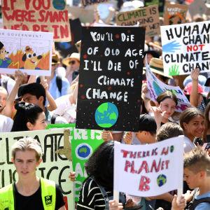 Massor av demonstranter med skyltar vid klimatstrejken i Sydney den 20 september 2019.