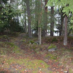 Stigen från Villa Ståhlström ner till Erstan är stenig och krokig.