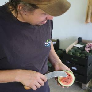 Anders Abrahamsson håller upp en melon som han skurit i mitten.