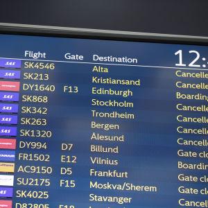 Tavla på flygfältet som visar att många av SAS flyg är inhiberade.