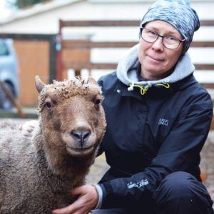 Sonja Österholm med fåren på Gamla Malmen i Pargas.