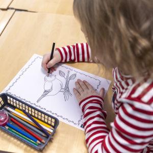 Luhangan alakoulun oppilas värittää kuvaa sinitiaisesta.