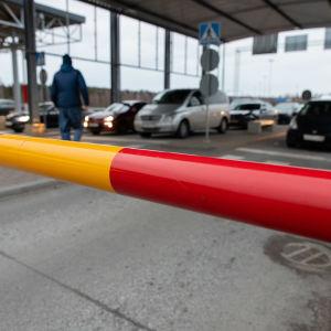 Venäläisiä autoja odottamassa Nuijamaan raja-asemalla Suomeen pääsyä. Nämä ovat viimeisiä autoja Suomeen tulossa ennen kuin raja suljettiin Koronaviruksen takia.