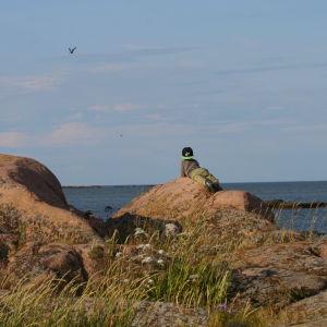 ett barn tittar på måsarna från en klippa vid havet.
