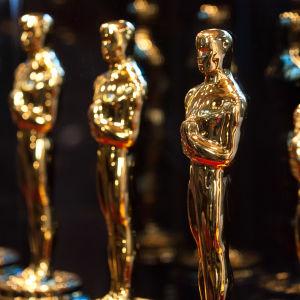 Oscarstatyetter i rad