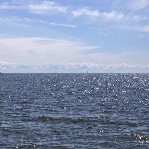 Merimaisema Lauttasaaresta.