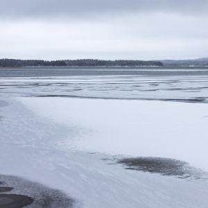 Heikkoja jäitä Päijänteen rannassa, kauempana avovettä.
