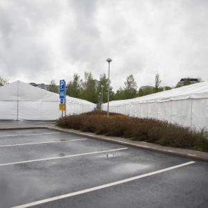 Suuria telttoja Turun yliopiston kampusalueella.