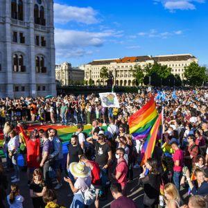 Tusentals människor med regnbågsflaggor demonstrerade mot det tilltänkta lagpaketet utanför parlamentsbyggnaden i Budapest på måndagen.