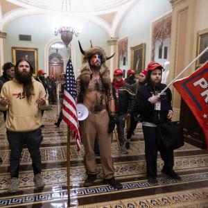 Trumpanhängare inne i kongressbyggnaden den 6 januari 2021.