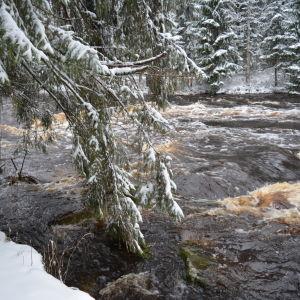Vedenpinta on noussut joessa Seinäjoella.
