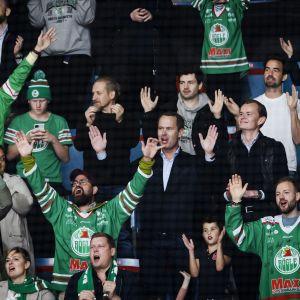 Djurgårdens IF – Rögle BK. Rögen faneja 7.10.2021