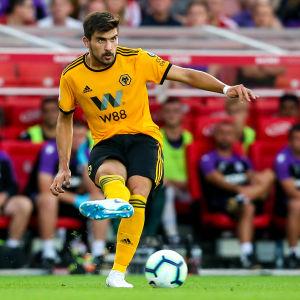 Rúben Neves har trollbundit Wolvesanhängarna på lagets mittfält.