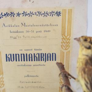 """Diplom med texten """"Asikkalan maatalousnäyttelyssä heinäkuun 30-31 p:nä 1949 Hägg'in Turkismuokkaamo on saanut tämän kunniakirjan osoituksena annetusta palkinnosta kunniamaininta alan tarvikkeista."""""""