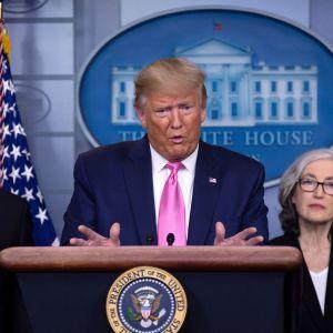 Mike Pence och Donald Trump på presskonferens