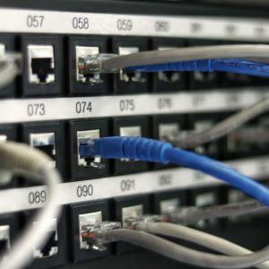 Bild på numrerade datakablar in i serverportar.