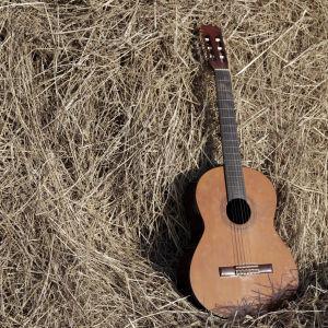 gitarr i hö