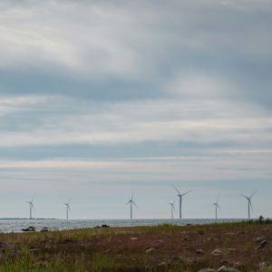 Tuulimyllyjä taivaanrannassa, merta