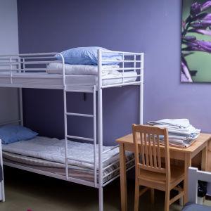 Den här bilden visar ett familjerum på ett skyddshem i Helsingfors. Det syns en våningssäng och ett skrivbord och en stol på bilden. Väggen är violett och det hänger en tavla ovanför bordet.
