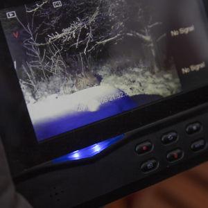 Susi Raimon kamerassa.