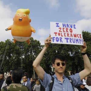 Trumpbaby ballong i luften med en demonstrant med en skylt.