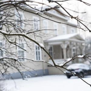 """Det stora hus som går under namnet """"Varkaus klubben"""" i bakgrunden. I förgrunden en kal kvist med snö på."""