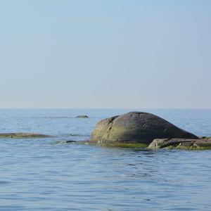 Klippa ute i havet.