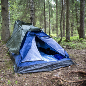 Sininen teltta keskellä metsää. Teltan suu on avoinna.
