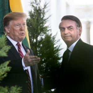Donald Trump och Jair Bolsonaro poserar vid sin gemensamma presskonferens.