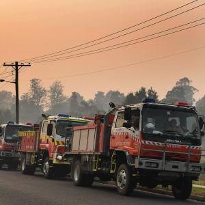 Brandbilar på rad vid väg.