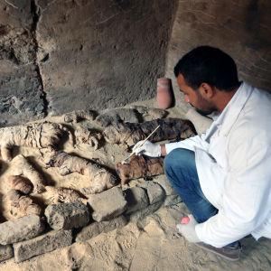 Bild på en arkeolog som penslar på ett gravfynd.
