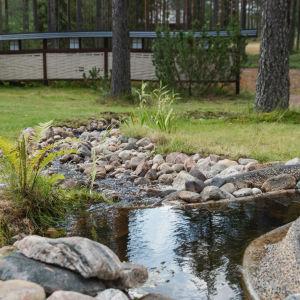 Kivillä reunustettu puro