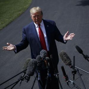 Donald Trump står framför en mängd utsträckta mikrofoner.