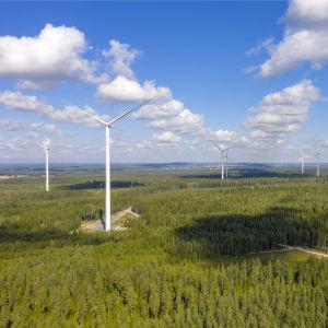 Tuulivoimaloita Lakiakankaalla Isojoella