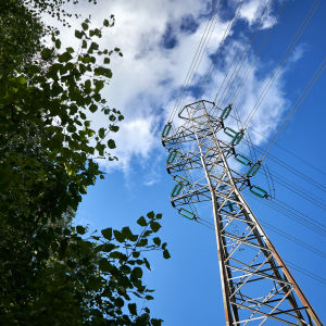 Ellinje med träd bredvid, blå himmel i bakgrunden.
