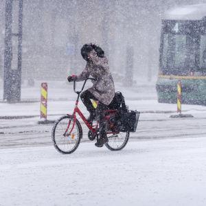 Vinterväder i Helsingfors 7.3.2021.