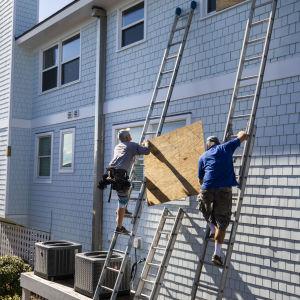 Invånare i North Carolina förbereder sig för orkanen Florence genom att sätta skivor framför husfönstren.