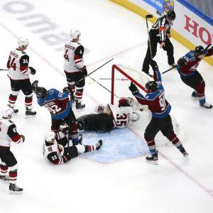 Colorados spelare jublar över ett mål.