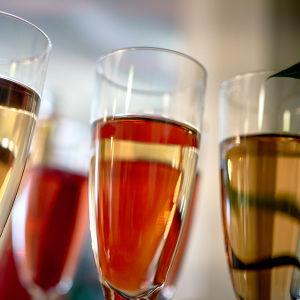 mousserande vin i glas.