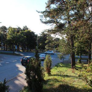 Korsningen Flemingsgatan och Raseborgsvägen